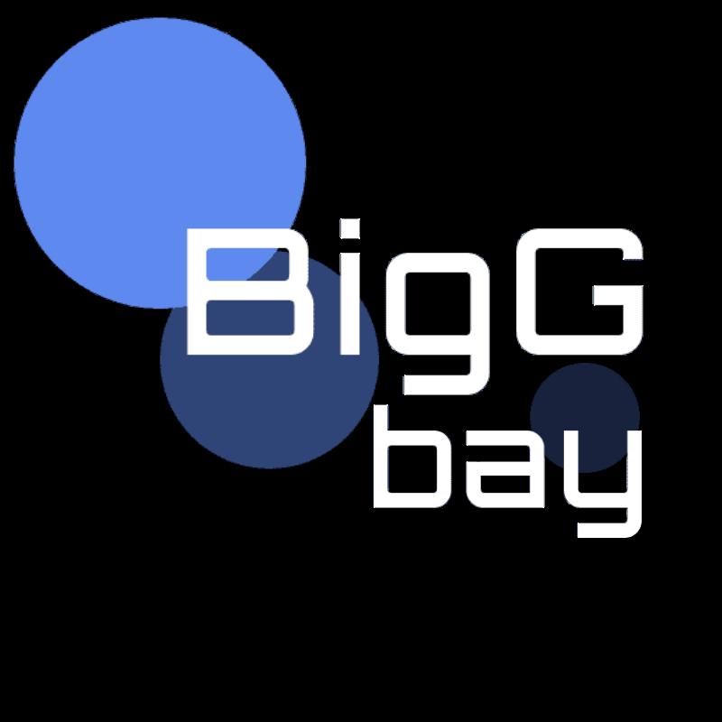 BigG-bay logo